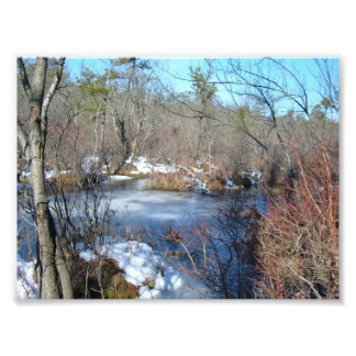 Frozen Wetlands Pond Photo Print