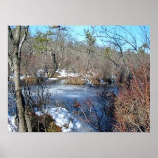 Frozen Wetlands Pond Poster