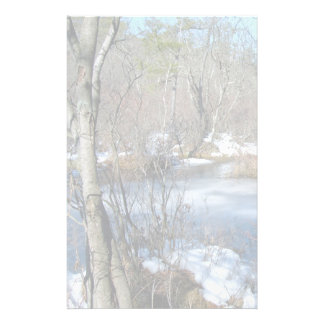 Frozen Wetlands Pond Stationery