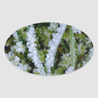 Frozen Winter Grass Oval Sticker