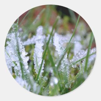 Frozen Winter Grass Round Stickers