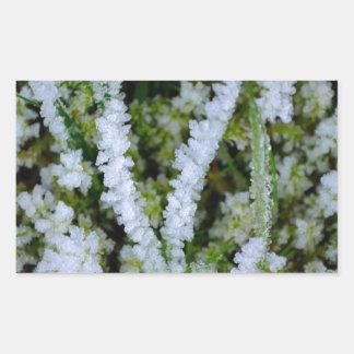 Frozen Winter Grass Sticker