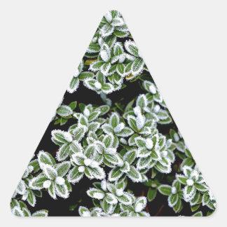 Frozen Winter Plants Triangle Sticker