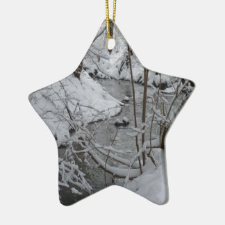 Frozen Winter River Christmas Ornament