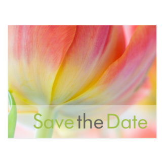 Fruehling • Save the Date Postkarte Postcard