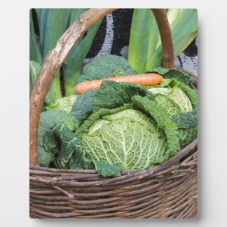 fruit and vegetables in the basket plaque