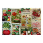 Fruit and Veggies Seed Catalogue Collage Poster