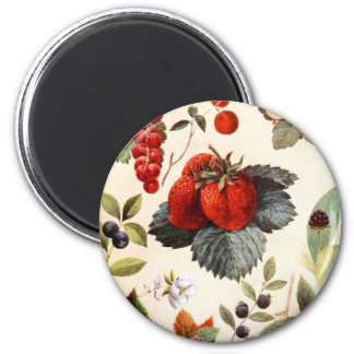 Fruit Botanical 6 Cm Round Magnet