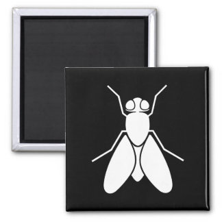 Fruit Fly Square Magnet