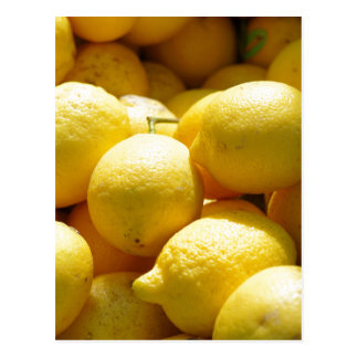 Fruit: Lemons Postcard