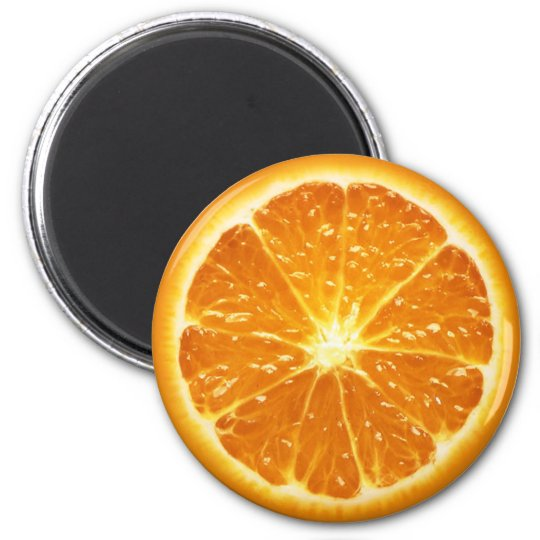 Fruit Magnet Series -Orange-
