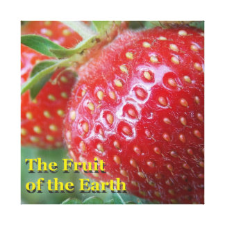 Fruit of the Earth Canvas Print