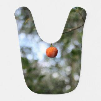 Fruit of the tree of madroño in the mountain range bib