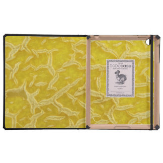 Fruit Skin Case For iPad
