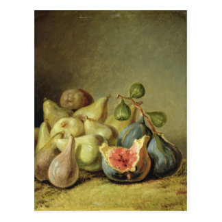 Fruit Still Life Postcard