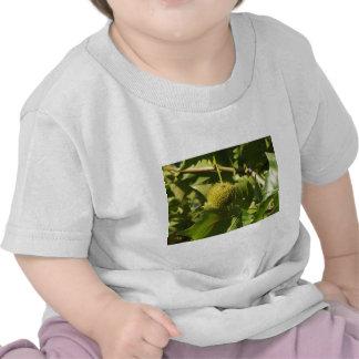 Fruit Tshirt