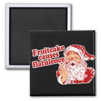 Fruitcake Causes Flatulence Fridge Magnets