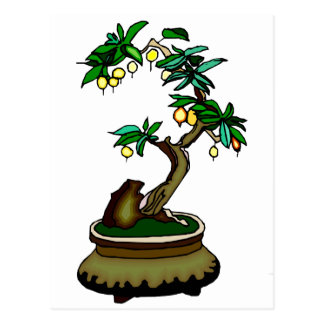 Fruiting Bonsai in Pot Bonsai Graphic Image Postcard