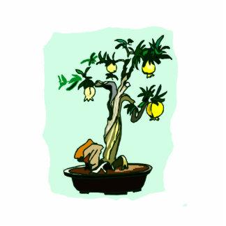 Fruiting Bonsai Yellow Fruit Graphic Image Design Photo Cut Outs