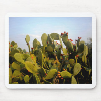 Fruiting Cactus Mouse Pad