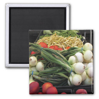 Fruits and Vegetables Square Magnet