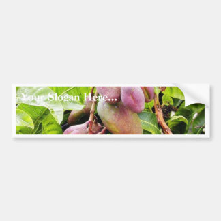 Fruits Plants Leaves Car Bumper Sticker