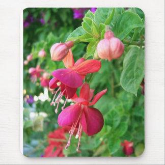 Fuchsia 5 mouse mats