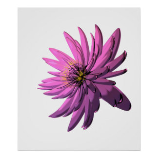 Fuchsia Chrysanthemum Flower Illustration Posters