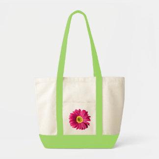 Fuchsia Daisy Flower