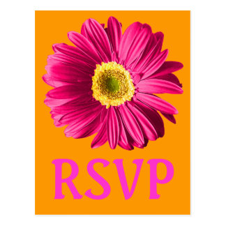 Fuchsia Daisy Flower RSVP Or Custom Postcard