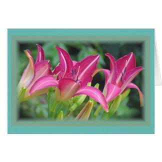 Fuchsia Dreams - Daylilies Card