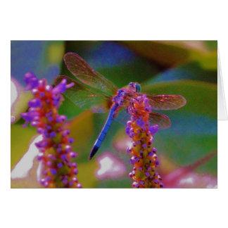 Fuchsia  flower and dragon fly card