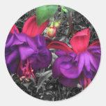 Fuchsia Flower Round Stickers