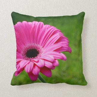 Fuchsia Gerbera Daisy Blooming Throw Pillow