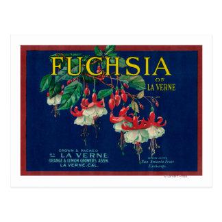 Fuchsia Lemon LabelLa Verne, CA Postcard