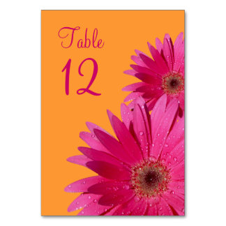 Fuchsia Pink Orange Gerbera Daisy Wedding Table Cards