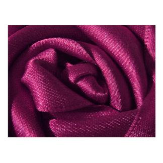 Fuchsia Rose Postcard