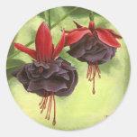 Fuchsia Round Sticker