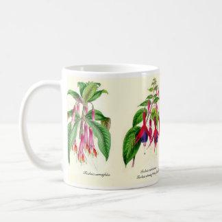 Fuchsia species of Joseph Paxton Basic White Mug