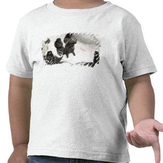 Fuegians going to trade in Zapallos Shirt
