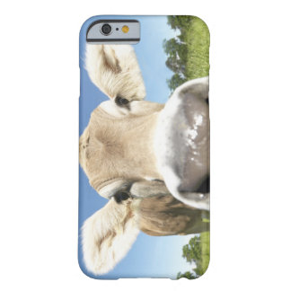 Fuessen, Bavaria, Germany Barely There iPhone 6 Case