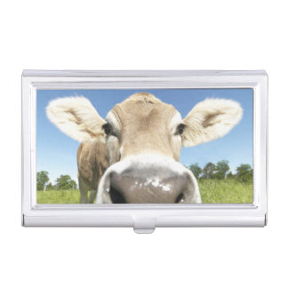 Fuessen, Bavaria, Germany Business Card Holder