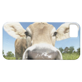 Fuessen, Bavaria, Germany iPhone 5 Case