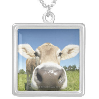 Fuessen, Bavaria, Germany Silver Plated Necklace