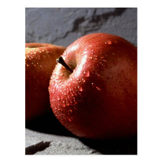 Fuji Apples Postcard