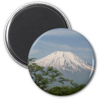 Fuji Magnet