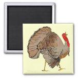 Full Colour Thanksgiving Turkey Magnets
