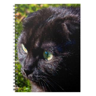 Full Face Scottish Fold Cat Notebook