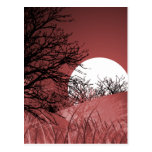 FULL FIELD MOON - RED POST CARD