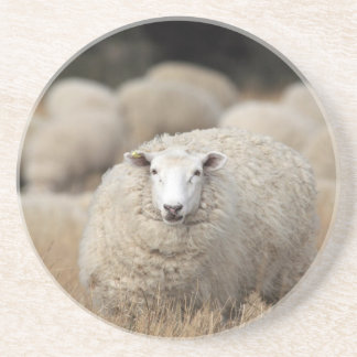 Full fleece sheep coaster